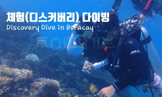 [보라카이 액티비티 & 데이투어] 스킨 스쿠버 다이빙 - 체험다이빙 (2시간 + 수중 촬영)