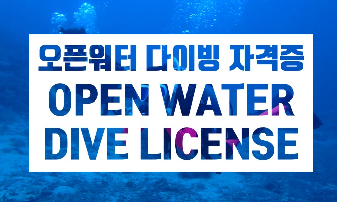 [세부 다이빙] 오픈워터 스쿠버 자격증 코스 (SSI / PADI 택 1) - 숙박 패키지(2박3일)