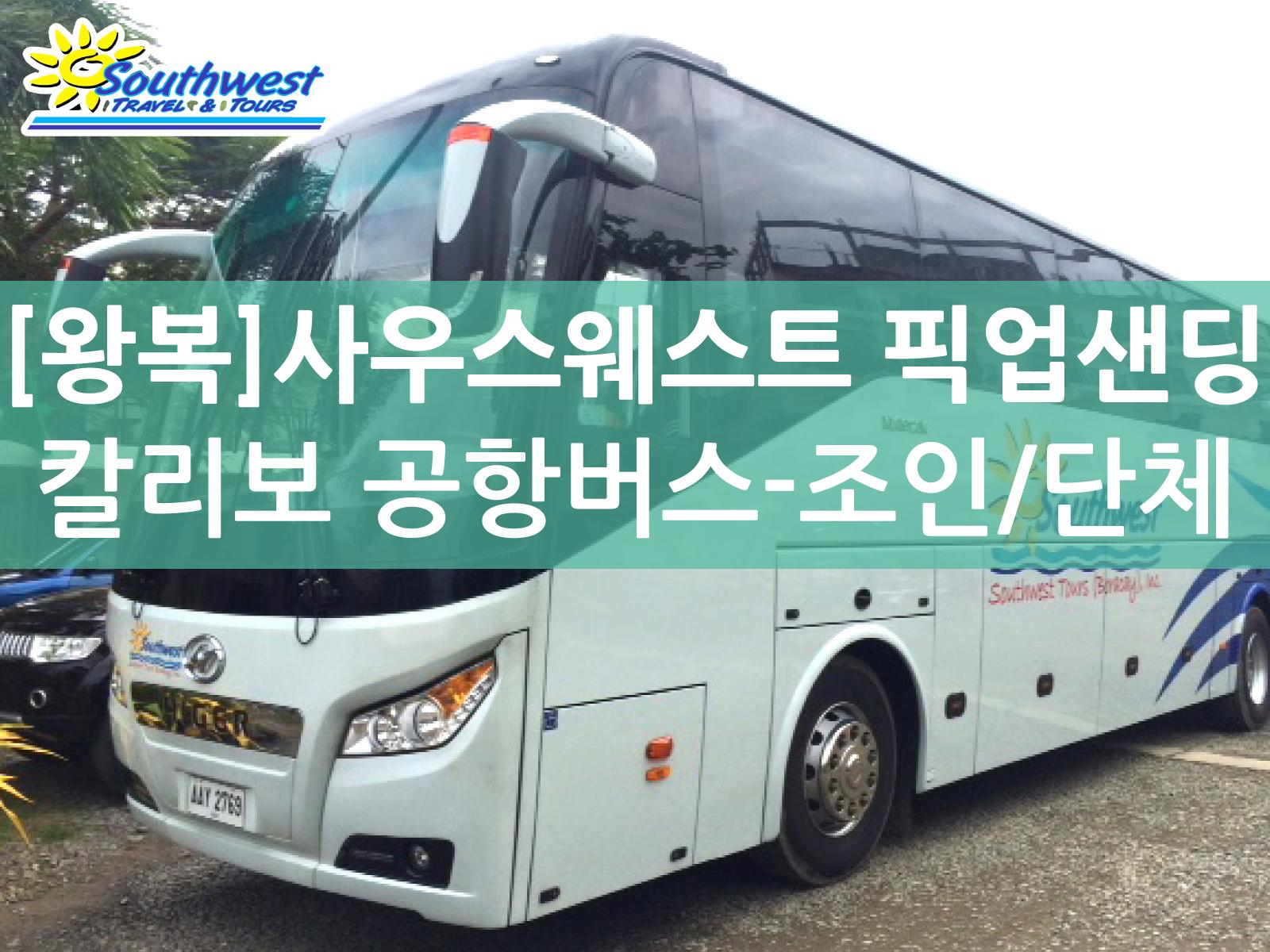 [사우스웨스트 보라카이] 버스(밴) 픽업샌딩(왕복) - 칼리보 공항 버스