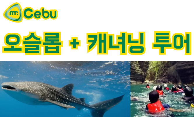 [단독투어] 세부 오슬롭 고래상어 투어 + 투말록 폭포 + 가와산 캐녀닝 투어