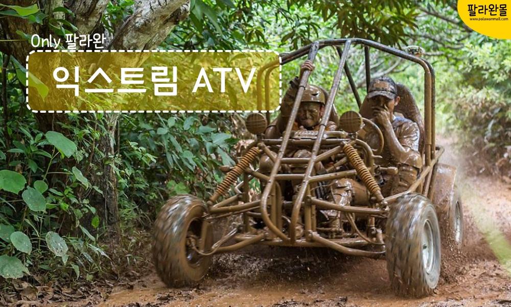 팔라완 익스트림 ATV/버기카 (망고농장, 스피커스 포인트, 부에야강 선택)